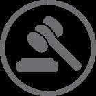 Commercial/Business Litigation